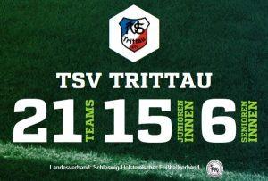 Teams des TSV Trittau Fußball 2017/2018
